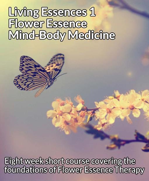 Living Essences 1 Flower Essence Mind-Body Medicine short course